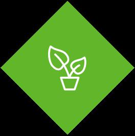 Icône avec une plante verte